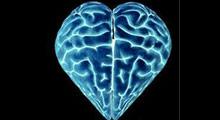 neuro-heart